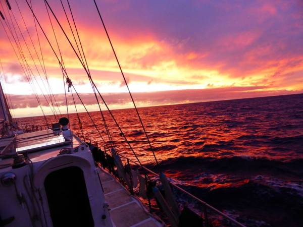 Tonga and American Samoa – Not your average Cabin Charter!