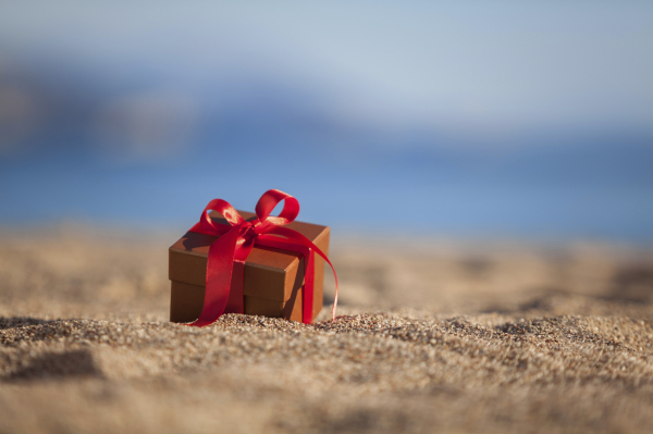 Searching for a special gift this season?